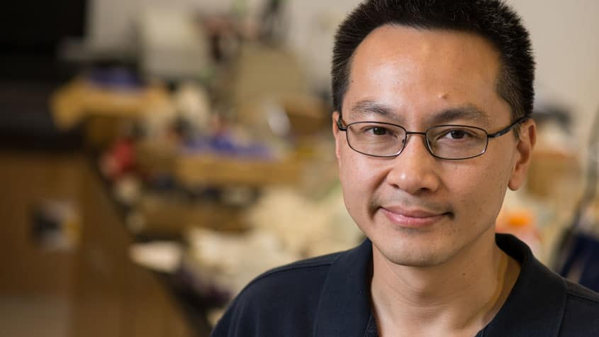 Wong named William M. McCardell Professor in Chemical Engineering